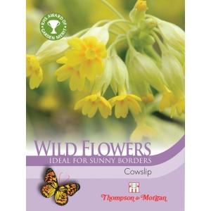 Wild Flower Cowslips Primula Veris