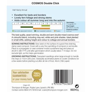 Cosmos Double Click