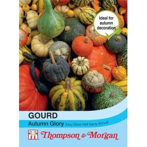 Gourd Autumn Glory
