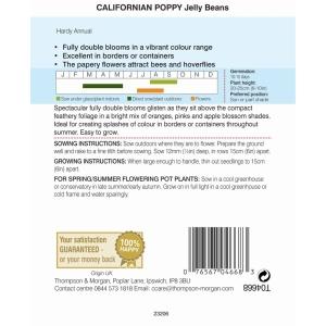 Californian Poppy Jelly Beans
