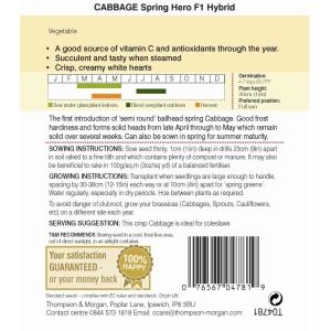 Cabbage Spring Hero F1 Hybrid