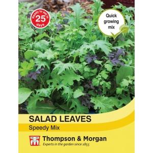 Salad Leaves Speedy Mix