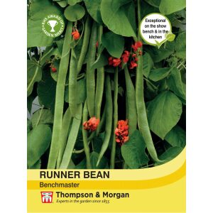 Runner Bean Benchmaster