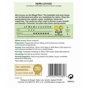 Herb Lovage