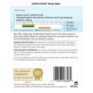 Sunflower Teddy Bear