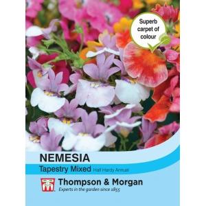 Nemesia Tapestry Mixed