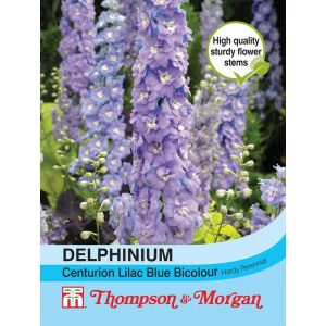 Delphinium Centurion Lilac Bicolour Hyb