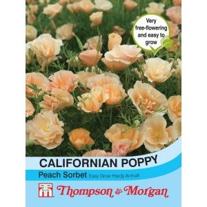 Californian Poppy Peach Sorbet