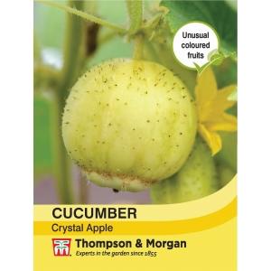 Cucumber Crystal Apple