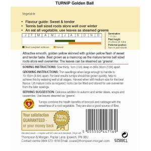 Turnip Golden Ball
