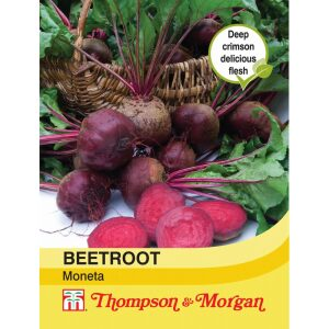 Beetroot Moneta