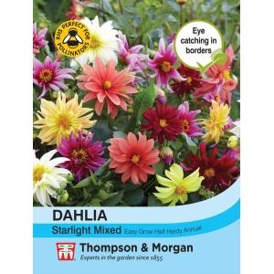 Dahlia Starlight Mixed
