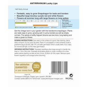 Antirrhinum Lucky Lips