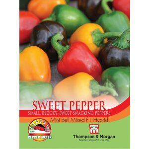 Pepper Sweet Mini Bell Mixed F1 Hybrid