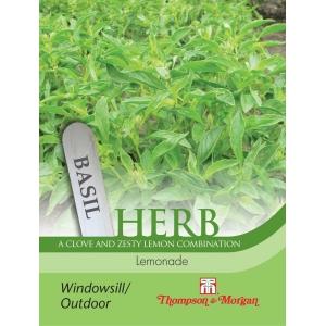 Herb Basil Lemonade