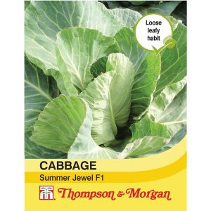 Cabbage Summer Jewel F1 Hybrid