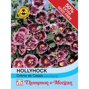 Hollyhock Creme de Cassis