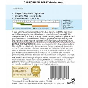 Californian Poppy Golden West