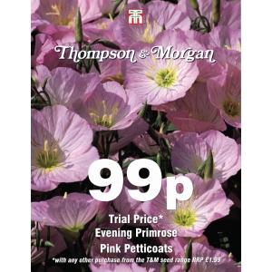 Evening Primrose Pink Petticoats