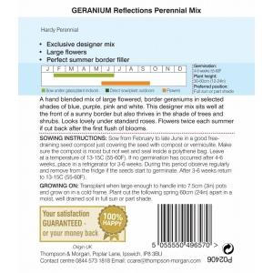 Geranium Reflections