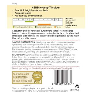 Herb Hyssop Tricolour