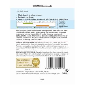 Cosmos Lemonade