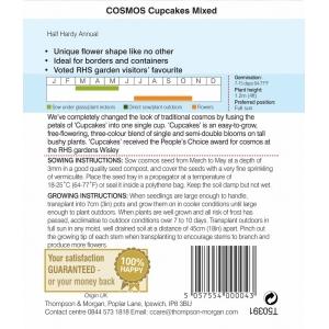Cosmos Cupcakes Mixed