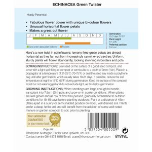 Echinacea Green Twister