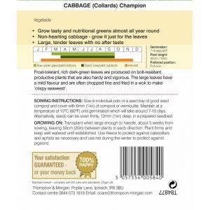 Cabbage Collards Champion