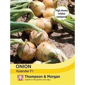 Onion Hylander F1 Hybrid