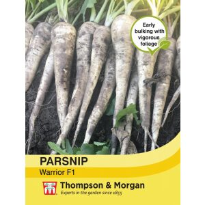 Parsnip Warrior F1 Hybrid