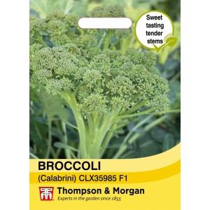 Broccoli calebrini Sweet Returns
