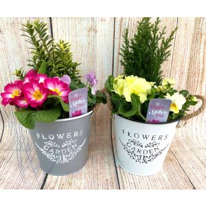 Flowers & Garden Bucket 16cm Grey